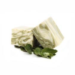 SOAP1 - Sallye Ander Body Soap